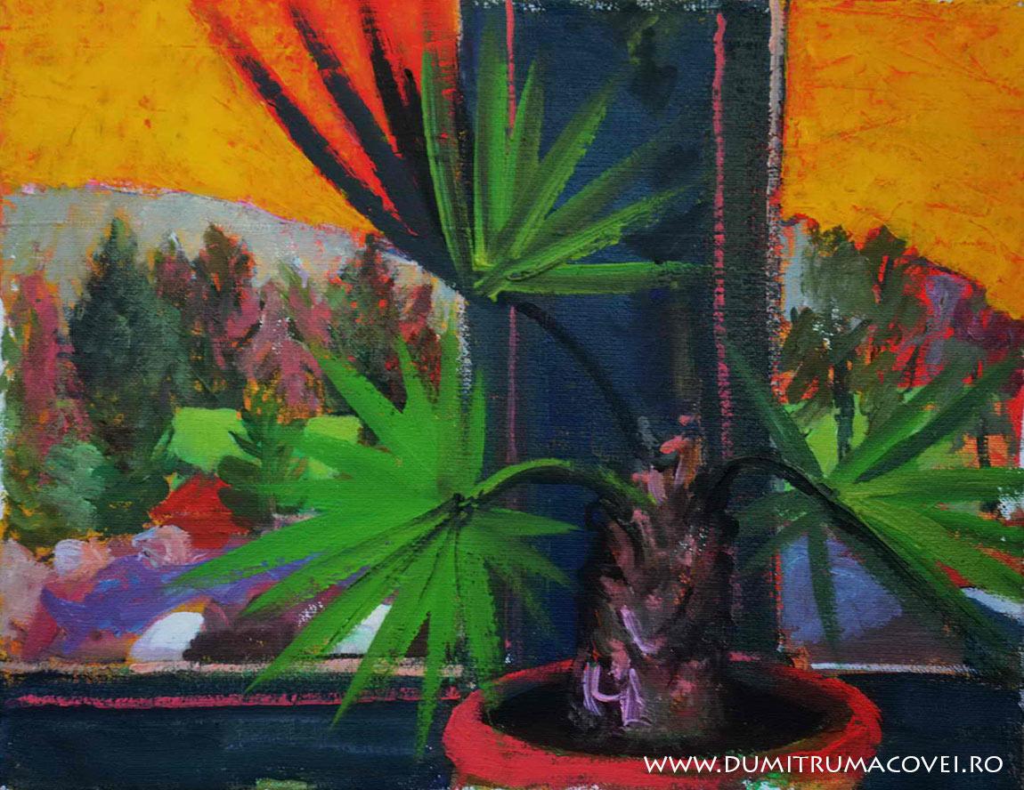 pictor Dumitru Macovei, Interior-exterior, cota 1000