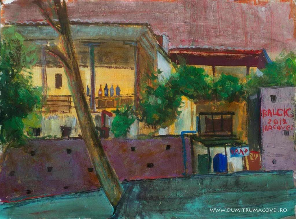 pictor Dumitru Macovei, Casa galbena