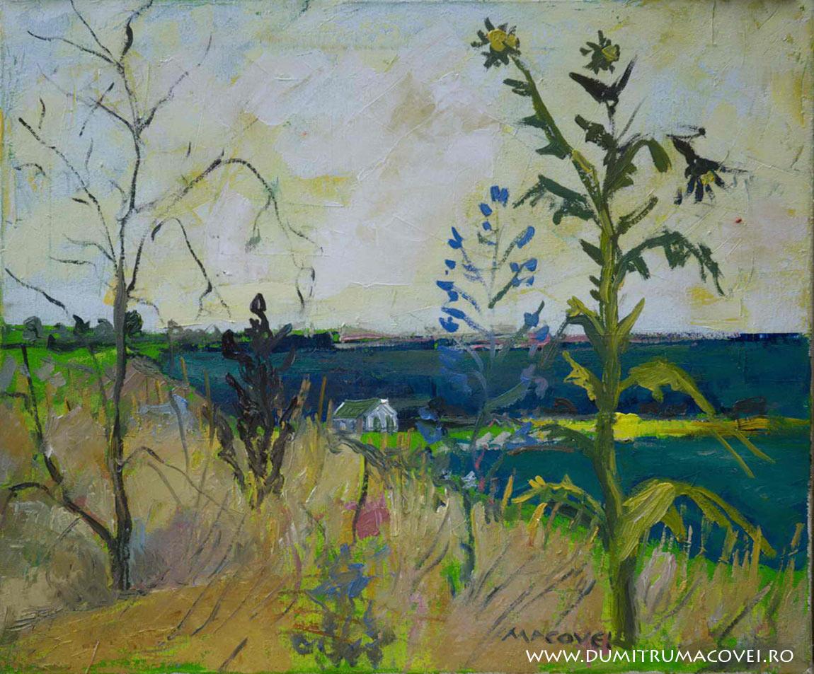 pictor Dumitru Macovei, Ciulini, Eforie Sud