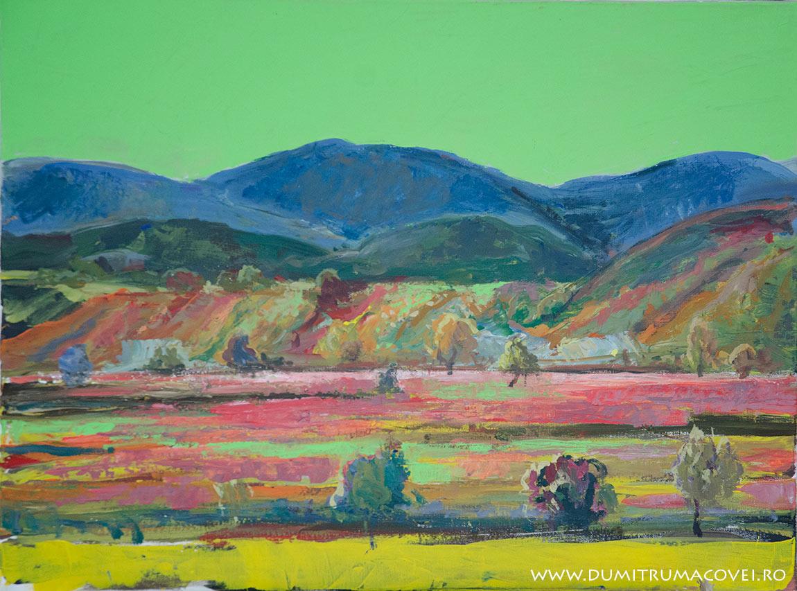 pictor Dumitru Macovei, Valea Trotusului