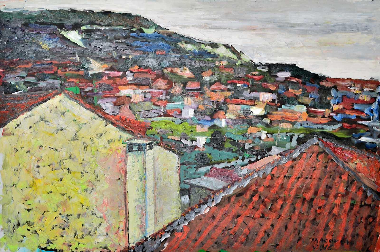 pictor Dumitru Macovei,Case