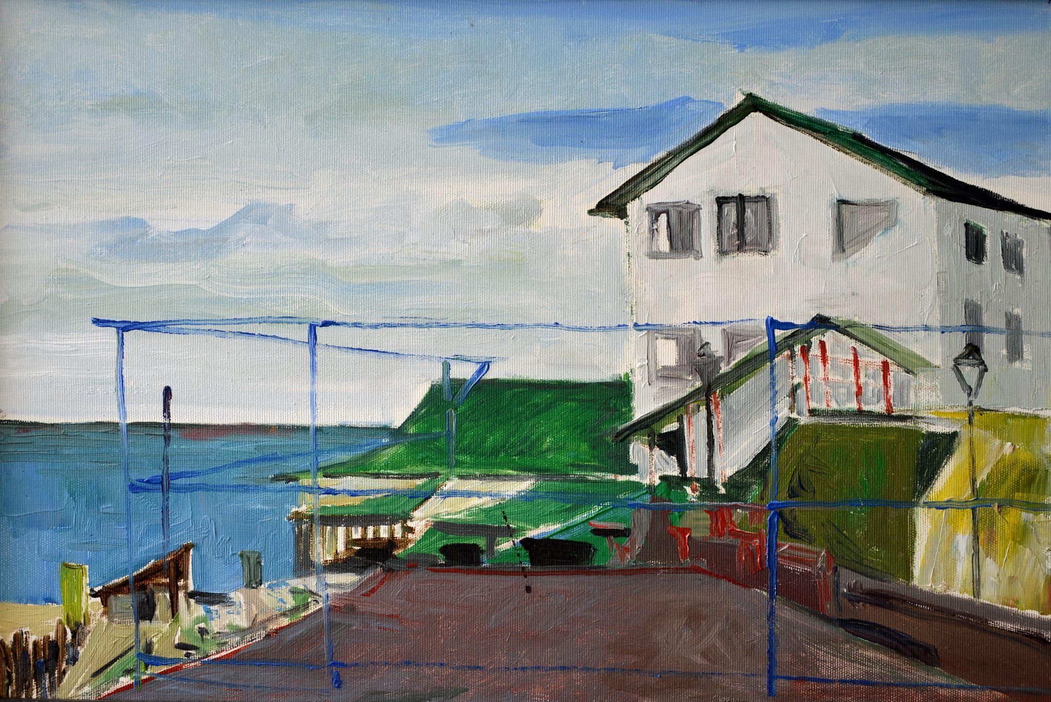 pictor Dumitru Macovei Vedere spre Mare