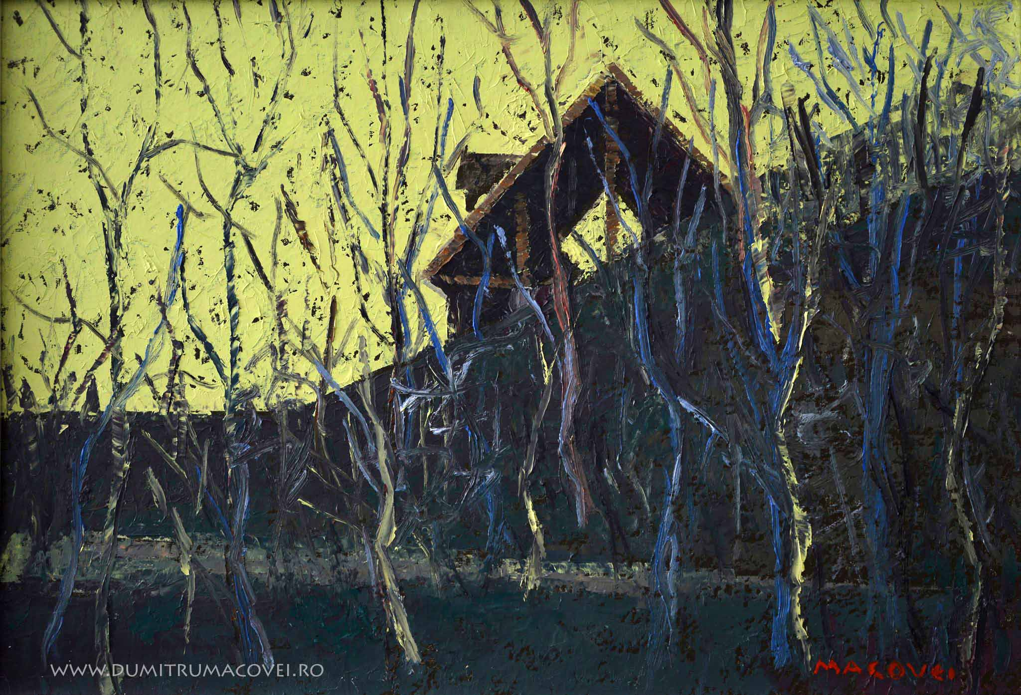 pictor Dumitru Macovei Casa