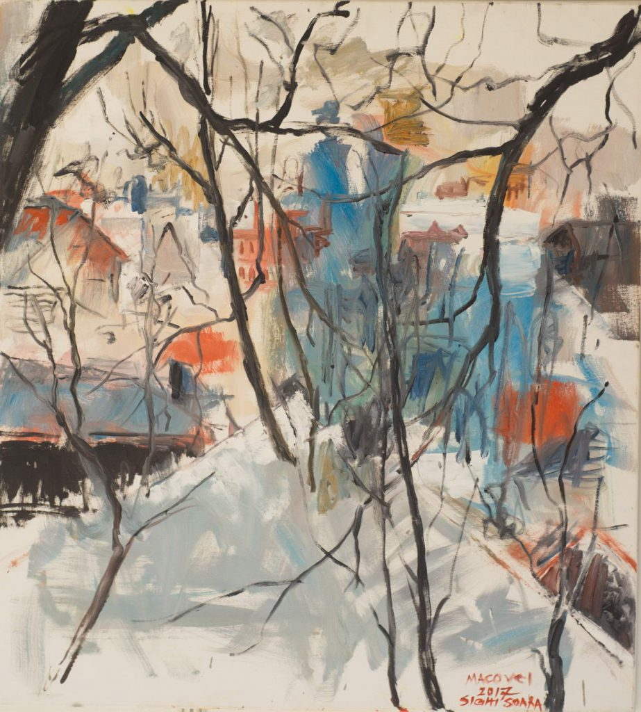 Peisaj din Sighisoara