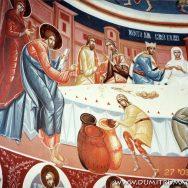 Biserica Vladiceni III