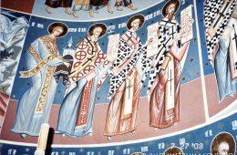 Biserica Vladiceni V